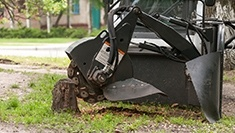Stump Grinding Services in Calgary, AB
