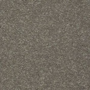 Carpet Flooring in Saskatoon